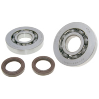 OEM Standard 32593 crankshaft bearing set Viton for Gilera Runner, Piaggio Hexagon, Italjet Dragster 125, 180cc